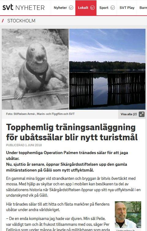 SVT nyheter_Stockholm